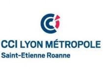 Plan d'économies pour la CCI Lyon Métropole St Etienne Roanne
