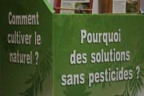 Cultivons notre jardin «au naturel»…