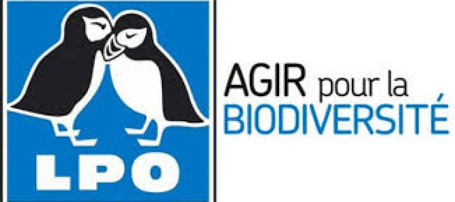 La LPO se réorganise en Auvergne Rhone Alpes