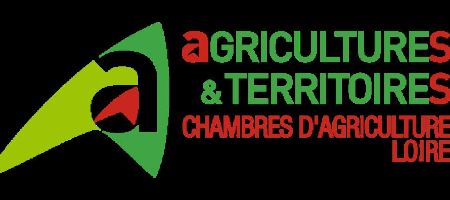 Chambre d'agriculture Loire : élections le 31 janvier prochain