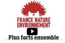 Naissance de la FNE Loire.