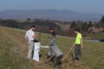 5000 arbustes plantés par le Parc du Pilat, pour reconstituer des haies
