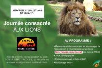 Journée des lions.