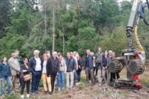 La  filière Forêt-Bois dans notre département
